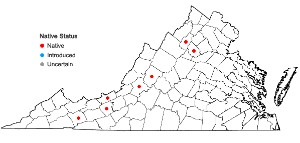 Locations ofAbietinella abietina (Hedw.) M. Fleisch. in Virginia