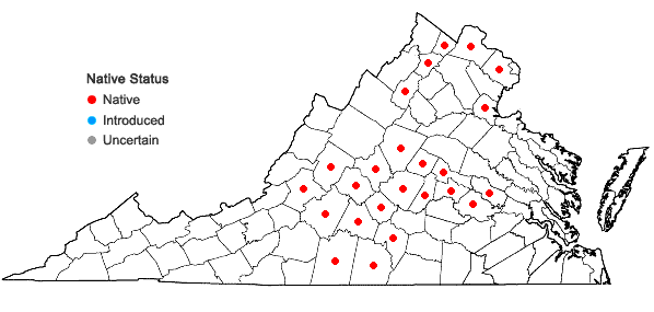 Locations ofAcalypha deamii (Weatherby) Ahles in Virginia