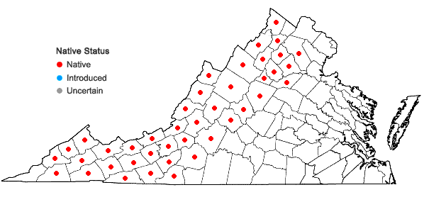 Locations ofAcer pensylvanicum L. in Virginia