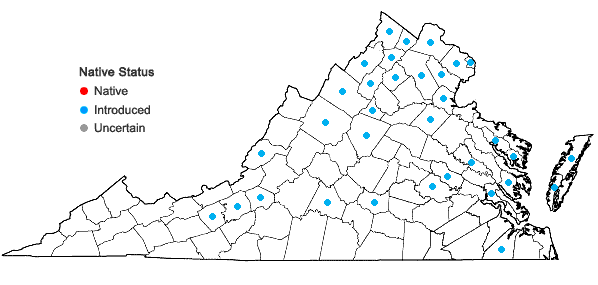 Locations ofAcer platanoides L. in Virginia