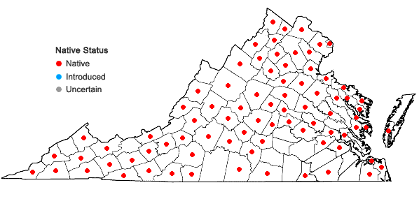Locations ofAcer saccharinum L. in Virginia