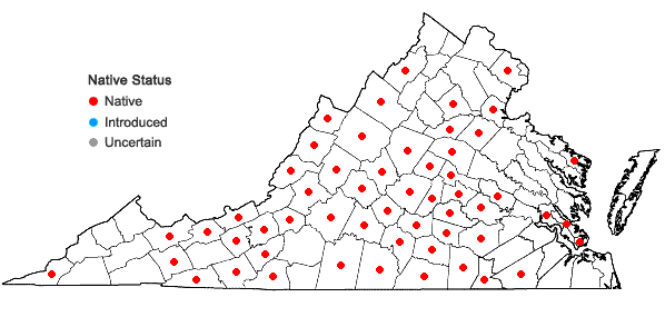 Locations ofAconitum uncinatum L. in Virginia