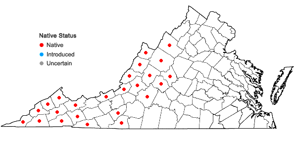 Locations ofActaea podocarpa DC. in Virginia