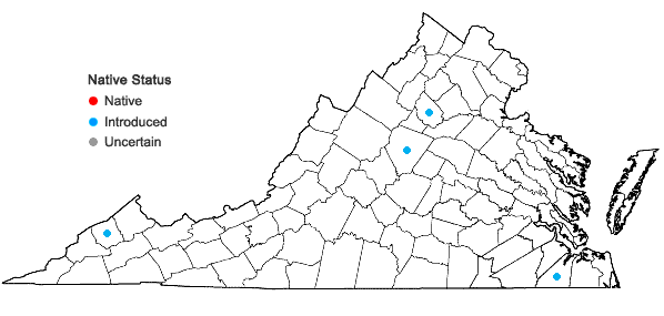 Locations ofActinidia chinensis Planch. in Virginia