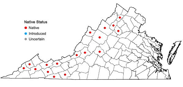 Locations ofAdlumia fungosa (Ait.) Greene ex BSP in Virginia
