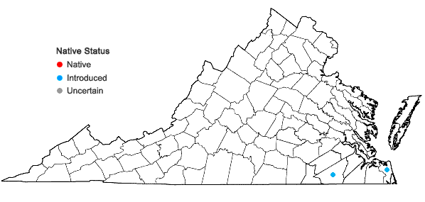 Locations ofAeschynomene indica L. in Virginia