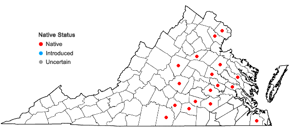 Locations ofAgalinis fasciculata (Ell.) Raf. in Virginia