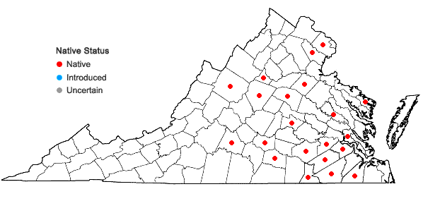 Locations ofAgalinis obtusifolia Raf. in Virginia