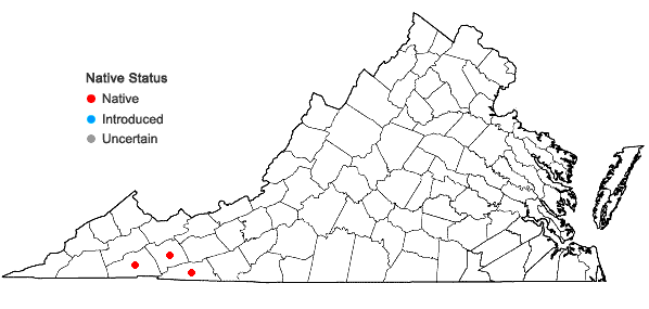 Locations ofAgeratina altissima (L.) King & H.E. Robins. var. roanensis (Small) Clewell & Wooten in Virginia