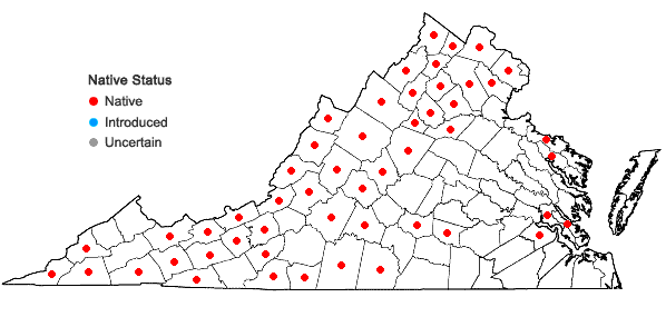 Locations ofAgrimonia gryposepala Wallr. in Virginia
