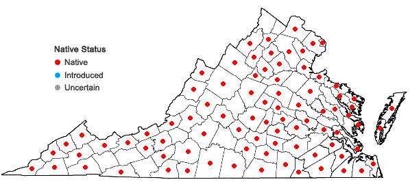 Locations ofAgrostis hyemalis (Walt.) B.S.P. in Virginia