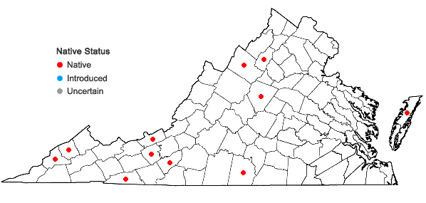 Locations ofAgrostis scabra Willd. in Virginia