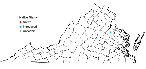 Locations ofAldrovanda vesiculosa L. in Virginia