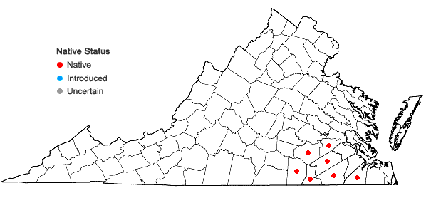 Locations ofAletris aurea Walt. in Virginia
