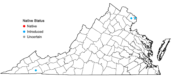 Locations ofAlnus glutinosa (L.) Gaertn. in Virginia
