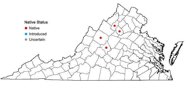 Locations ofAlnus incana (L.) Moench ssp. rugosa (Du Roi) Clausen in Virginia