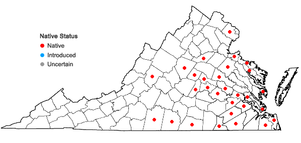 Locations ofAlopecurus carolinianus Walt. in Virginia