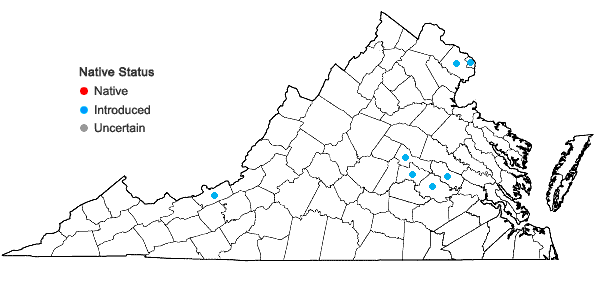 Locations ofAlopecurus geniculatus L. in Virginia