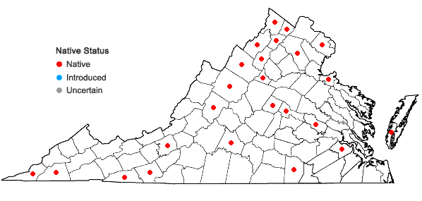 Locations ofAmaranthus retroflexus L. in Virginia
