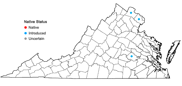 Locations ofAmbrosia psilostachya DC. in Virginia