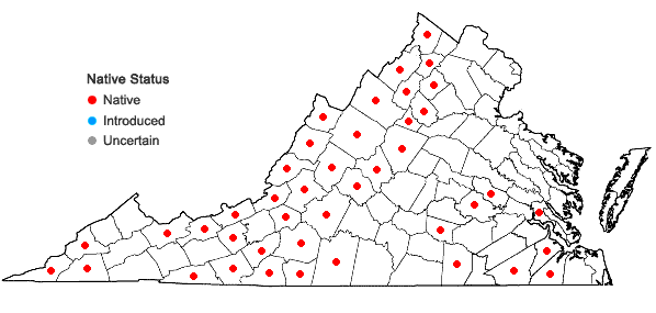 Locations ofAmianthium muscitoxicum (Walt.) Gray in Virginia