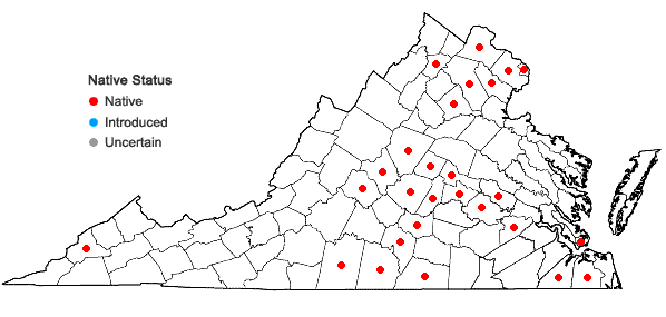 Locations ofAmmannia coccinea Rottb. in Virginia