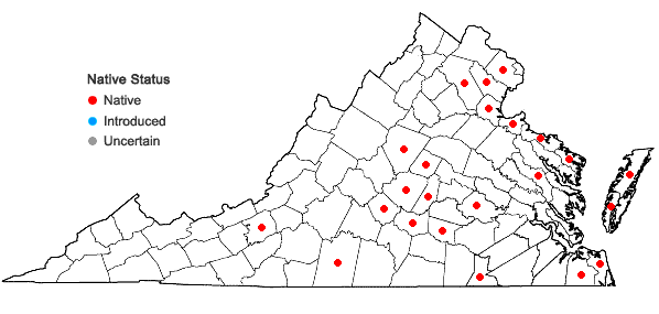 Locations ofAmorpha fruticosa L. in Virginia