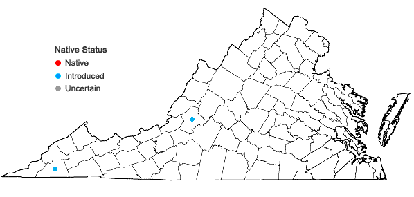 Locations ofAmphiachyris dracunculoides (DC.) Nutt. in Virginia