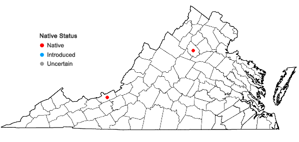 Locations ofAmphidium lapponicum (Hedw.) Schimp. in Virginia