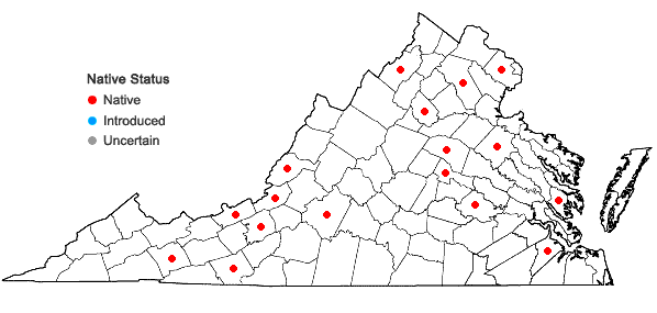 Locations ofAnacamptodon splachnoides (Froel. ex Brid.) Brid. in Virginia