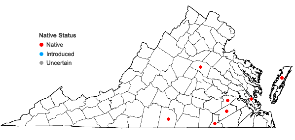 Locations ofAndropogon perangustatus Nash in Virginia