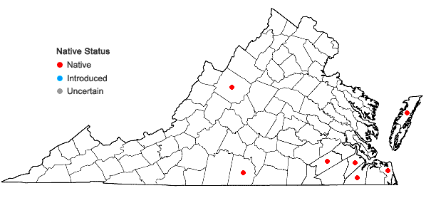 Locations ofAndropogon virginicus L. var. decipiens C. Campbell in Virginia