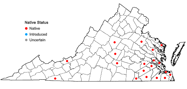 Locations ofAneura pinguis (L.) Dumort. in Virginia