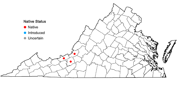 Locations ofAneura sharpii Inoue & N.G. Mill. in Virginia