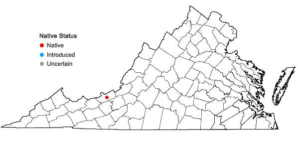 Locations ofAnomobryum concinnatum (Spruce) Lindb. in Virginia