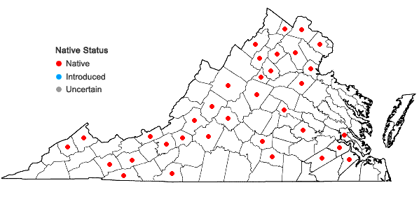 Locations ofAnomodon minor (Hedwig) Lindberg in Virginia