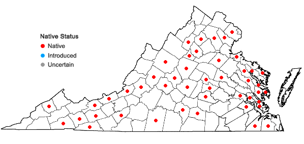 Locations ofAnomodon tristis (Ces.) Sull. & Lesq. in Virginia