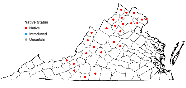 Locations ofAntennaria neglecta Greene in Virginia