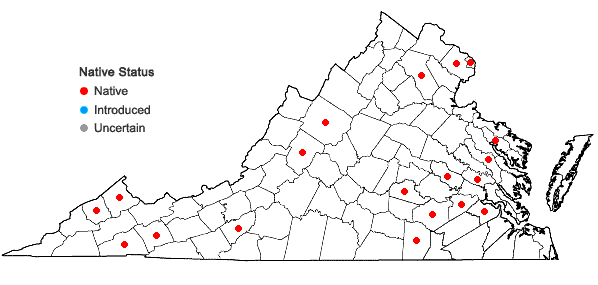 Locations ofAntennaria parlinii Fern. ssp. fallax (Greene) Bayer & Stebbins in Virginia