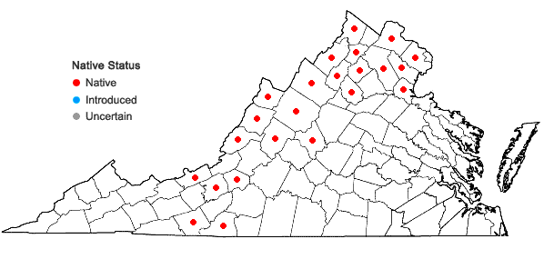 Locations ofAntennaria virginica Stebbins in Virginia