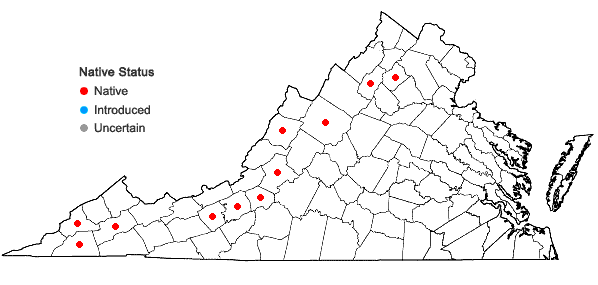 Locations ofAnticlea elegans (Pursh ) Rydb. var. glauca (Nutt.) Zomlefer & Judd in Virginia