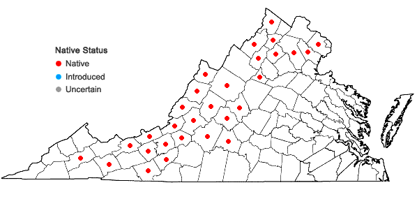 Locations ofApocynum androsaemifolium L. in Virginia