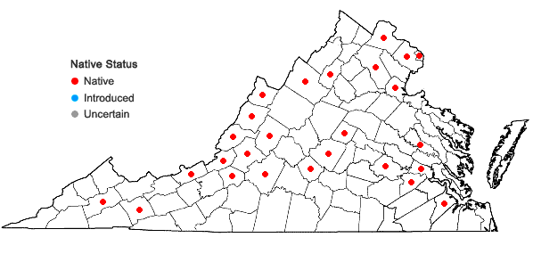 Locations ofApocynum sibiricum Jacq. in Virginia