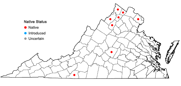 Locations ofArabis patens Sullivant in Virginia