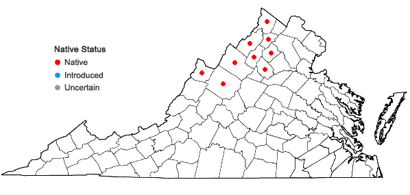 Locations ofAralia hispida Vent. in Virginia
