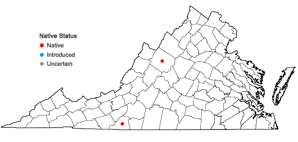 Locations ofArethusa bulbosa L. in Virginia
