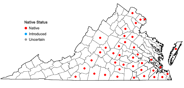 Locations ofAristida longespica Poir. in Virginia