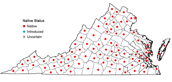 Locations ofArnoglossum atriplicifolium (L.) H.E. Robins. in Virginia