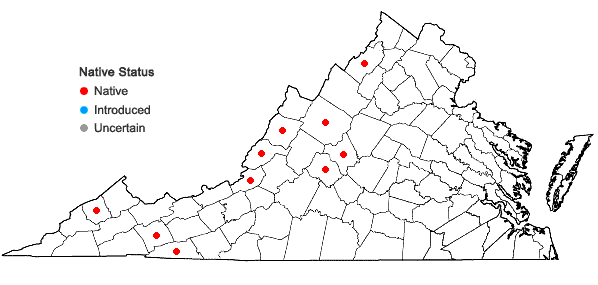 Locations ofArnoglossum reniforme (Hooker) H. Robinson in Virginia