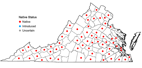 Locations ofArrhenopterum heterostichum Hedwig in Virginia